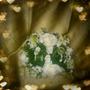 Centros De Mesa Floristería Matrimonio Decoración Flores