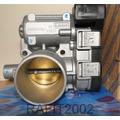Reparación Cuerpo Aceleración Fiat Palio / Siena 1.4 Y 1.8