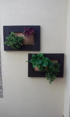 Jardines verticales barquisimeto bs u5xyc precio for Jardin vertical mercadolibre