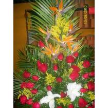 Floristeria Ramos Flores Arreglos Exoticos Graduacion