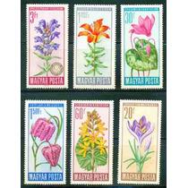 Estampillas De Hungria Serie 6 Valores 1966 Flores