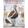 Plesa - La Senda De La Naturaleza - Pájaros
