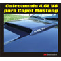 Kit Calcomania Para Capot Mustang 4.6l V8 Marca 3m
