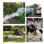 Cobija Emergencia Supervivencia Camping Excursion Myar