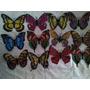 Mariposas Imantadas Con Efecto 3d