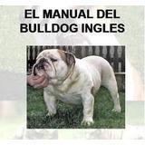 Manual Del Bulldog Inglés  Y Adiestramiento Pdf + 9 Regalos