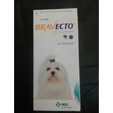 Bravecto: Pastillas Antipulgas Para Perros