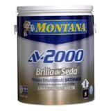 Pintura Montana Brillo De Seda Av2000