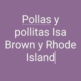 Ejemplares Cria Gallinas Ponedora,pollitas Pollonasy Huevos