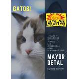 Gatarina Lanzacats 5kg Tienda Fisica, Distribuidores