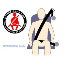 Cinturon De Seguridad 3 Puntos Universal Para Carro