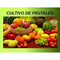 Manual De Cultivo De Frutales