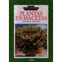 Como Seleccionar Y Cultivar Plantas En Macetas