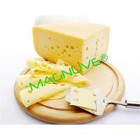 Kit Aprende Hacer Elaborar Quesos Quesería Mantequilla Yogur