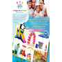 Fiestas Infantiles Alquiler Colchon Inflable Perros Helados