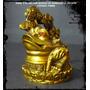 Rana 3 Patas Con Bonsai De Monedas 11,5x10cm (prosperidad)