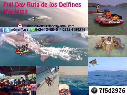 Full Viajes Y Excursiones @gordytours