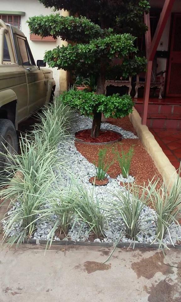 jardines verticales barquisimeto 0251 7156647 cabudare