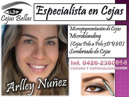 Micropigmentación Microblanding Curso Pelo A Pelo Ceja 3d 6d