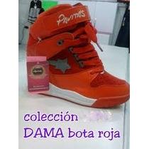 Zapatos Botas Pavitas Dama Tacones Interno.ultima Colección.