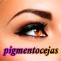 Pigmento Para Cejas Maquillaje Semipermanente Pigmencejas