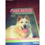 Mascotas - Nuevo Libro - Perro Mestizo