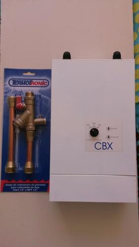 Reparación Repuestos Originales Calentador Termotronic Y Cbx