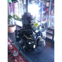 Motor Completo 150cc Moto Skygo, Leon Bera