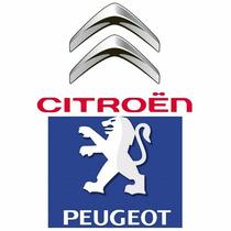 Repuestos Para Citroen Y Peugeot