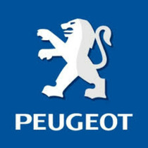 Filtro De Aire Para Peugeot 206 Y Patner 100 % Calidad Nuevo