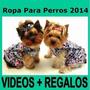 Kit Imprimible Ropa Para Perros Accesorios Camas Disfraces