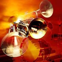 Set 2 Paños Gamuza Para Saxo-clarinet-flauta 5%desc+obsequio