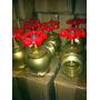 Valvula En Angulo H-m Bronce 2½ Incendios Hidrante Gabinete