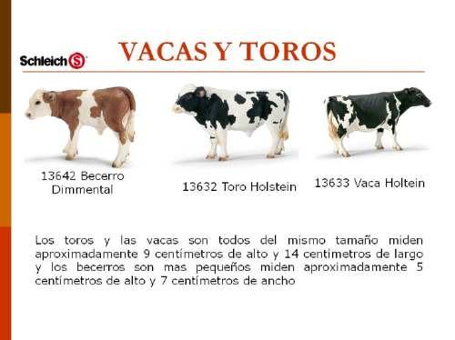Descripción de la vaca para niños - Imagui
