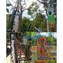 Muros De Escalada,tirolina,tirolesa, Puentes Colgantes Parqu | TEAM.EVOLUTION CA