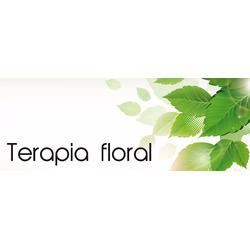 Terapia Floral Flores de Valeriano